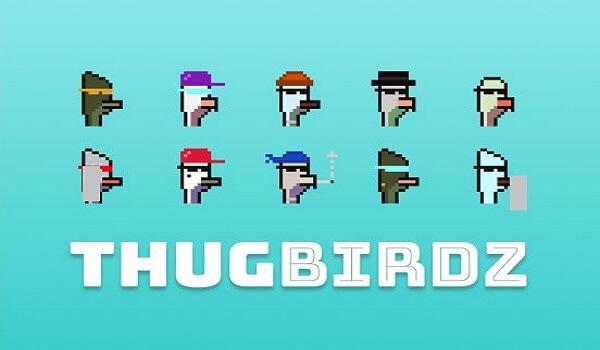 Thug Birdz NFT